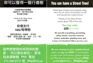 Chinese and English Flyer $25